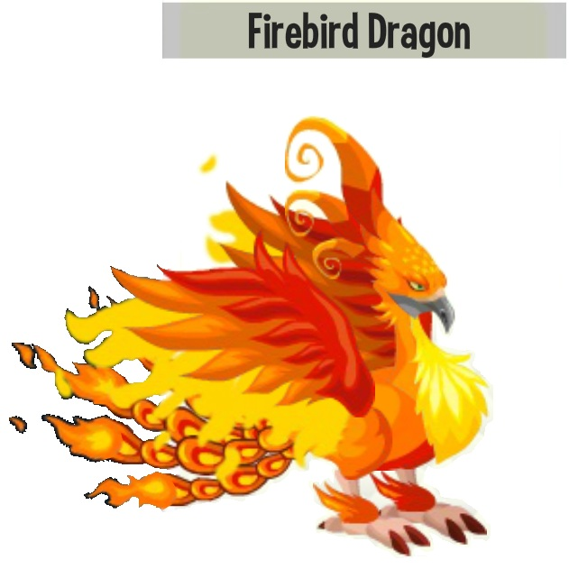 Firebird Dragon Picture Breed Flame Nature